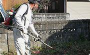 お庭の剪定・除草作業の写真